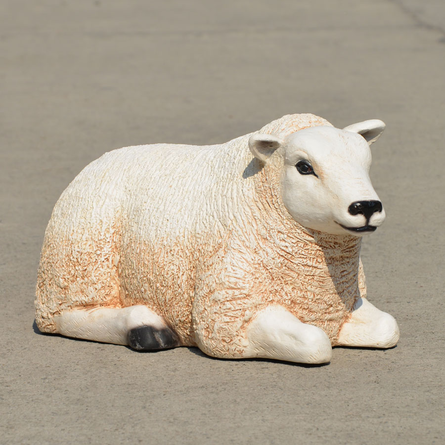 Small resting sheep