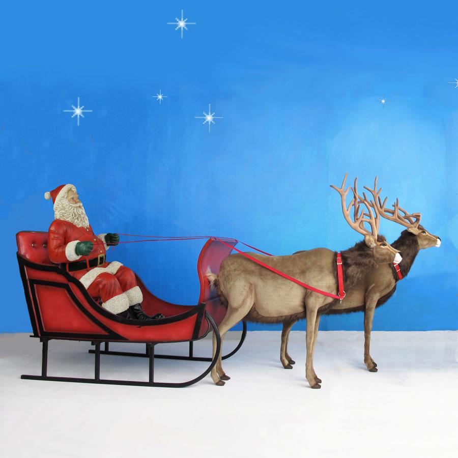 Life Sized Santa Sleigh Amp Two Reindeer 11 W