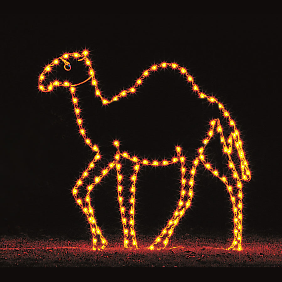 Camel Light Display