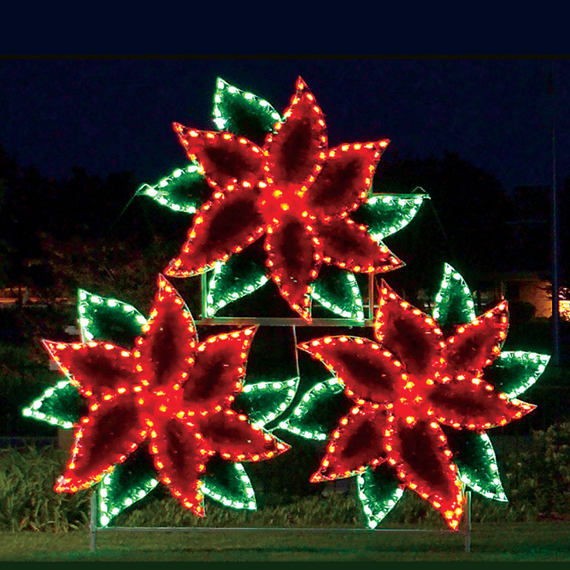 Poinsettia Light Display