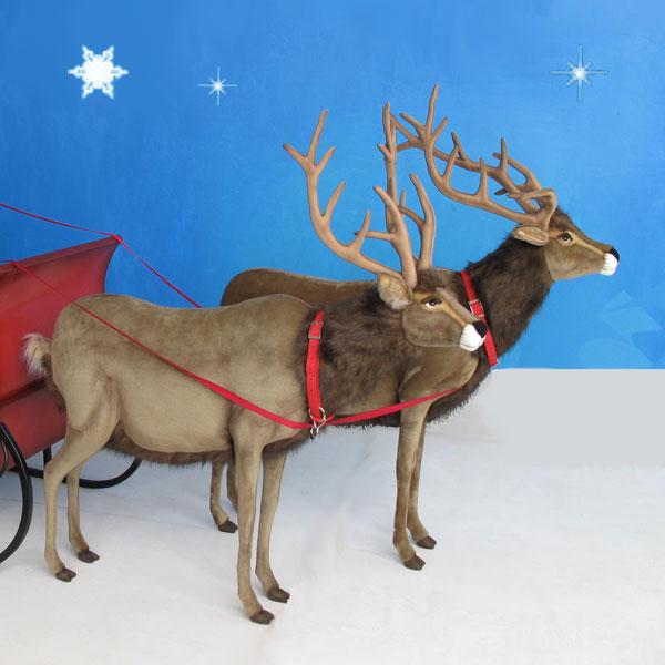 plush reindeer - Reindeer Images 2