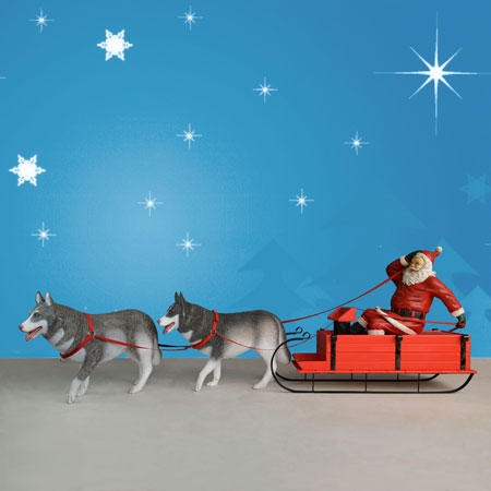 Husky Sled and Santa