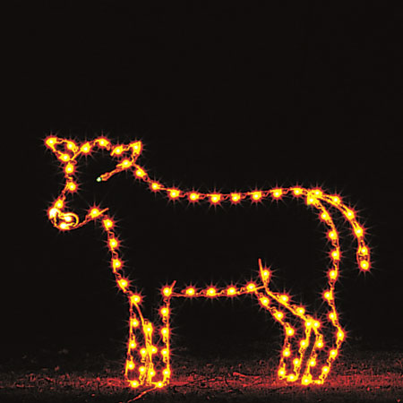 Cow Light Display