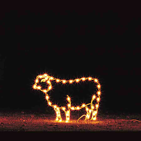 Sheep Light Display