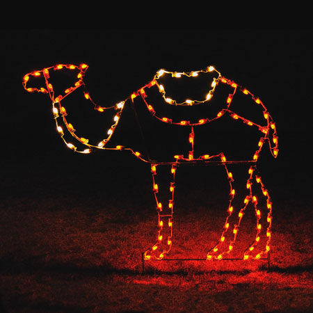 Holiday Lights Camel